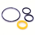 0174003 - O-Ring Package
