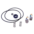 0398606 - Brush & Seal Kit