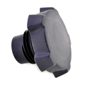 811569 - Oil Fill Cap-