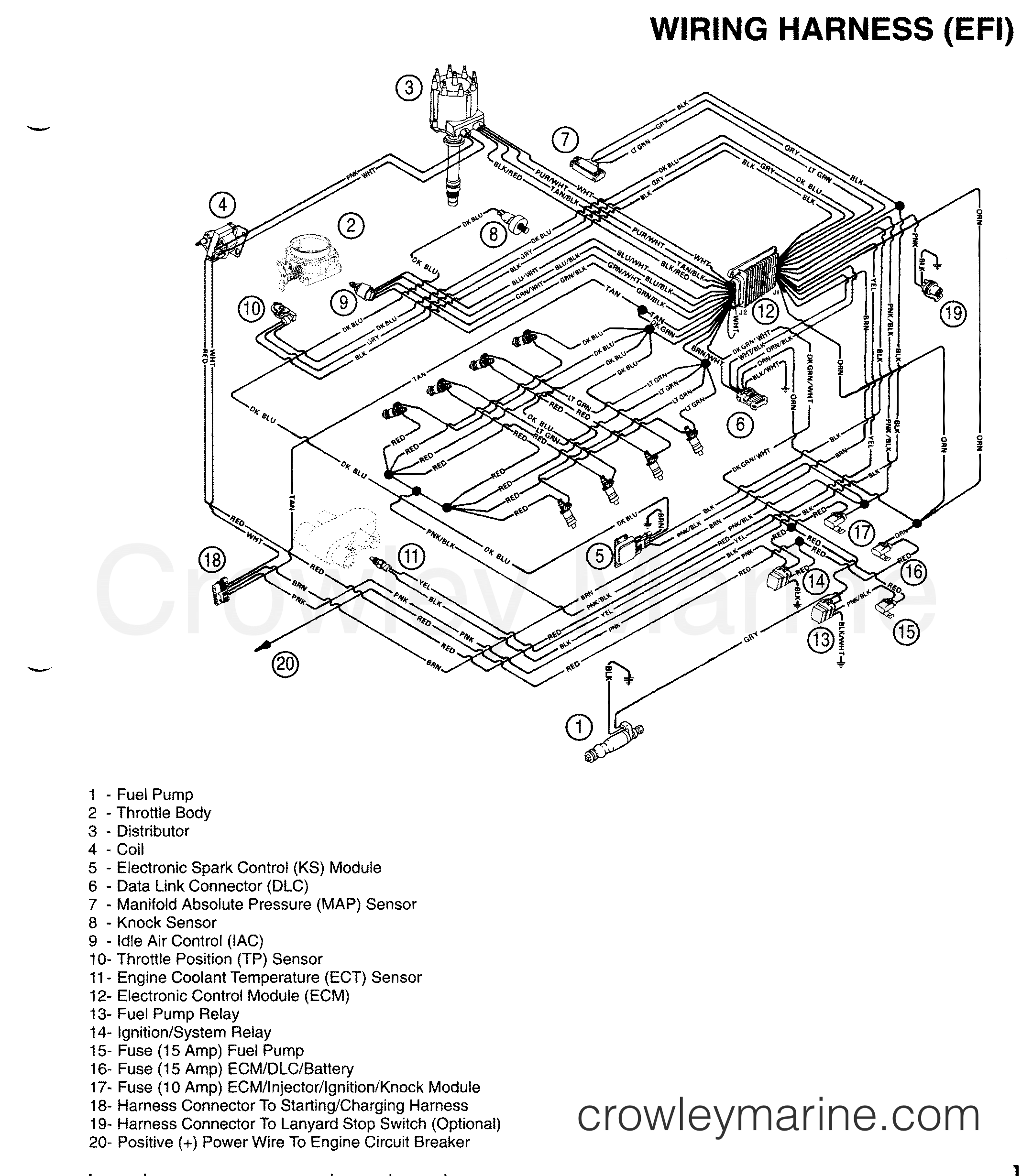 Wiring 350 Mag Engine Mercruiser Pictures Diagram Harness Efi Mercury Inboard Blk 2160x2460
