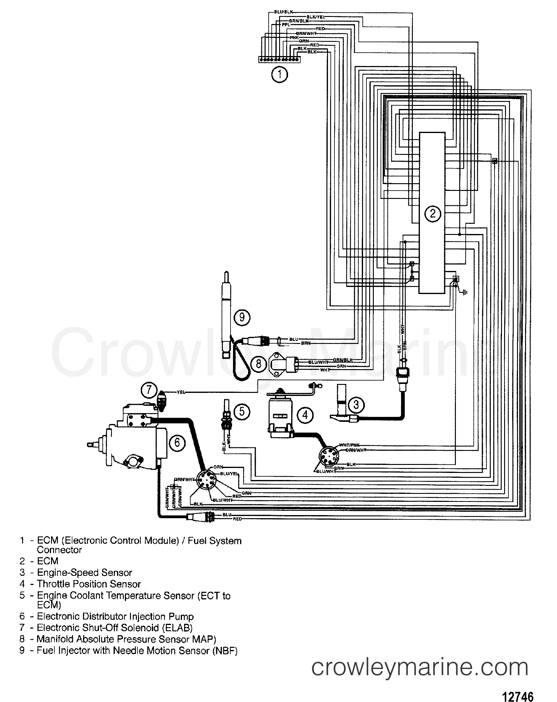 EDI HARNESS - 1997 Mercruiser 2 8LD [D-TRONIC] 428B116KD | Crowley