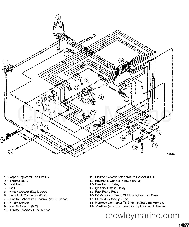 WIRING HARNESS(EFI) - 1996 Mercruiser 262TBI [ALPHA] 4262C01JT ... on