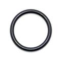 0302493 - Gearcase head O-Ring