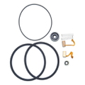 0390987 - Brush & Seal Kit