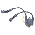 859738T1 - Ignition Coil